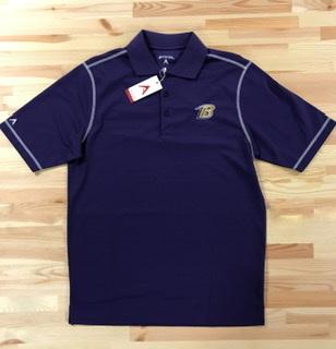 Baltimore Ravens Polo By Antigua